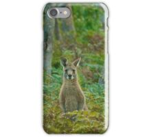 Kangaroo in the ferns B iPhone Case/Skin