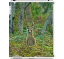 Kangaroo in the ferns B iPad Case/Skin