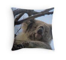 Koala up a tree A Throw Pillow