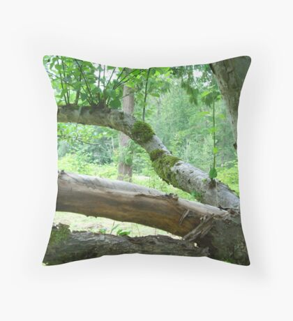 Old Apple Tree Throw Pillow