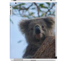 Koala up a tree B iPad Case/Skin