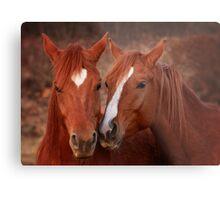 Equine Secrets Metal Print