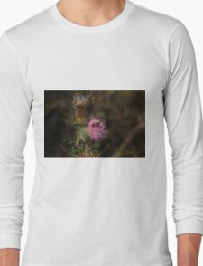 Thistle Bee It Long Sleeve T-Shirt
