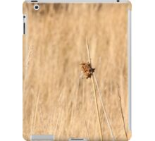Dry Scrub iPad Case/Skin