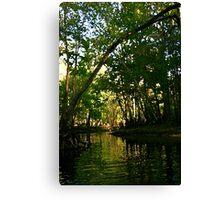 Springtime on the Hillsborough River Canvas Print