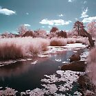 Little Pink River by lightsmith