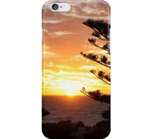 Trees in the sunset iPhone Case/Skin