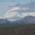 Mount McKinley in Denali Park Alaska by Crafter67