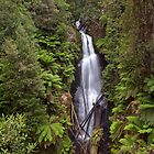 First Creek Falls by Travis Easton