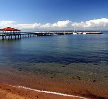 Redcliffe Jetty on Moreton Bay by davehopson