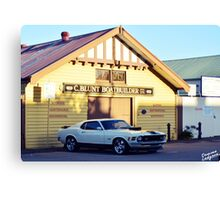 Mustang 1 Canvas Print