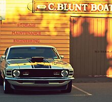 Mustang 2 by ladgrove