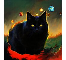 black cat Photographic Print
