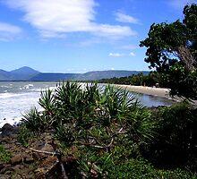 Rainforest Meets Ocean by Roanne