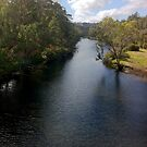 Blackwood River, Bridgetown, Western Australia #5 by Elaine Teague