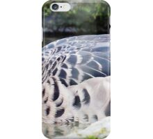 """""""Bronzed Winged Duck"""" iPhone Case/Skin"""