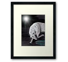 Moonlight Grace Framed Print