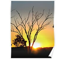 Brilliant Sunset Outback Australia Poster