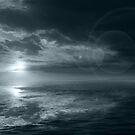 Moonrise by Voytek Swiderski