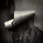 curl by Bill vander Sluys