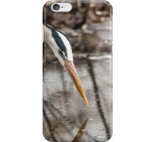 Great Blue Heron hunting iPhone Case/Skin