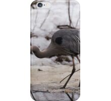 A Great Blue Heron fishing iPhone Case/Skin