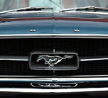 Mustang Grille by ladgrove