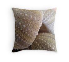 Radial Symmetry Throw Pillow