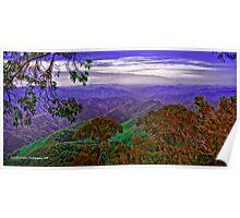 Vista views of Dorrigo National Park - NSW Poster