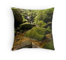 Valley of the Waters - Blue Mountains NP, NSW Throw Pillow