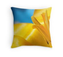 Yellow and blue Spring Throw Pillow