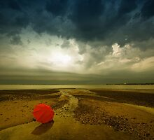 The Lost Umbrella by Mel Brackstone
