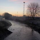 The River Tame by Grrrod