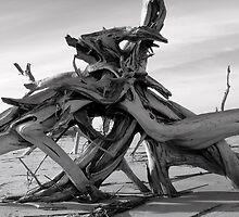 Folly Beach by Maris Stanley