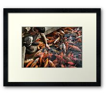 Man of the Fishes Framed Print