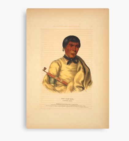Pee-Che-Kir, a Chippewa chief Canvas Print