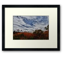 Clouds Above a Grassy Field Framed Print