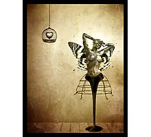 Scream of a Butterfly Photographic Print