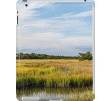 Wetland Marshes iPad Case/Skin