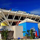 The Pier, St. Petersburg, FL... by Bob Moore