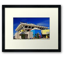The Pier, St. Petersburg, FL... Framed Print
