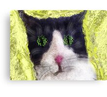Sillycat! Canvas Print