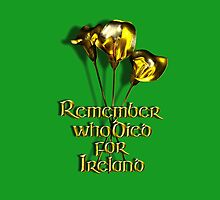 Remember who Died for Ireland by Declan Carr