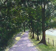 The Path by Sandi Redding