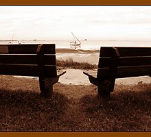 The Brown Benches by Nukee