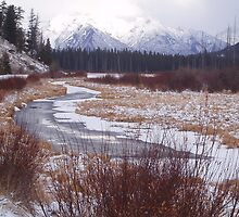 Vermillion Lakes, Banff, Canada by Harv