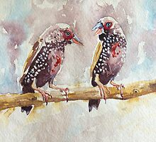 Painted Finches by TASHHOFER