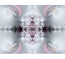 Delicate Dreams Photographic Print