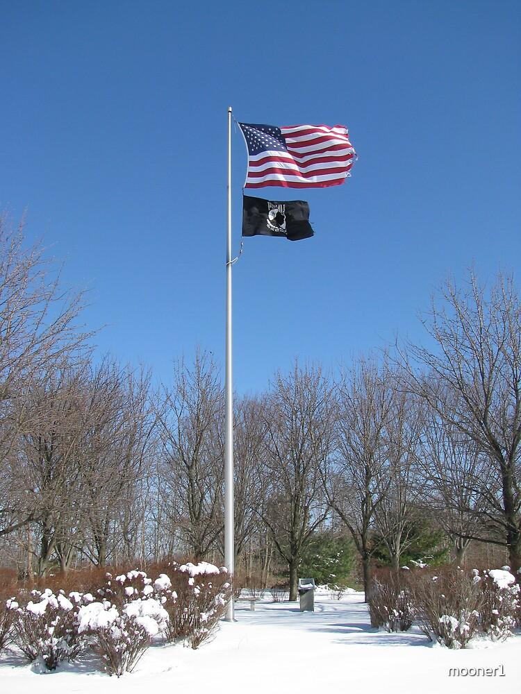 Stars and Stripes, POW/MIA at Vietnam Memorial, Long Island, NY by mooner1