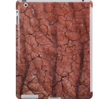 Red Dirt iPad Case/Skin